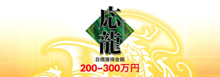 皇艇の有料プラン【応龍】