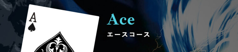 ナイトボートの有料プラン【Ace】