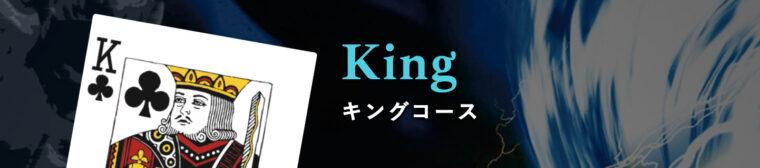 ナイトボートの有料プラン【King】